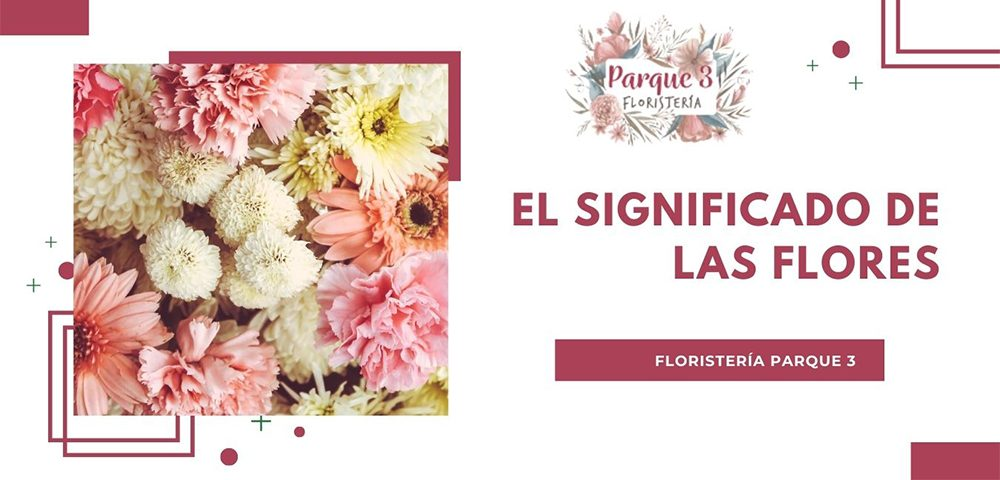 floristeriaparque3_significado_flores