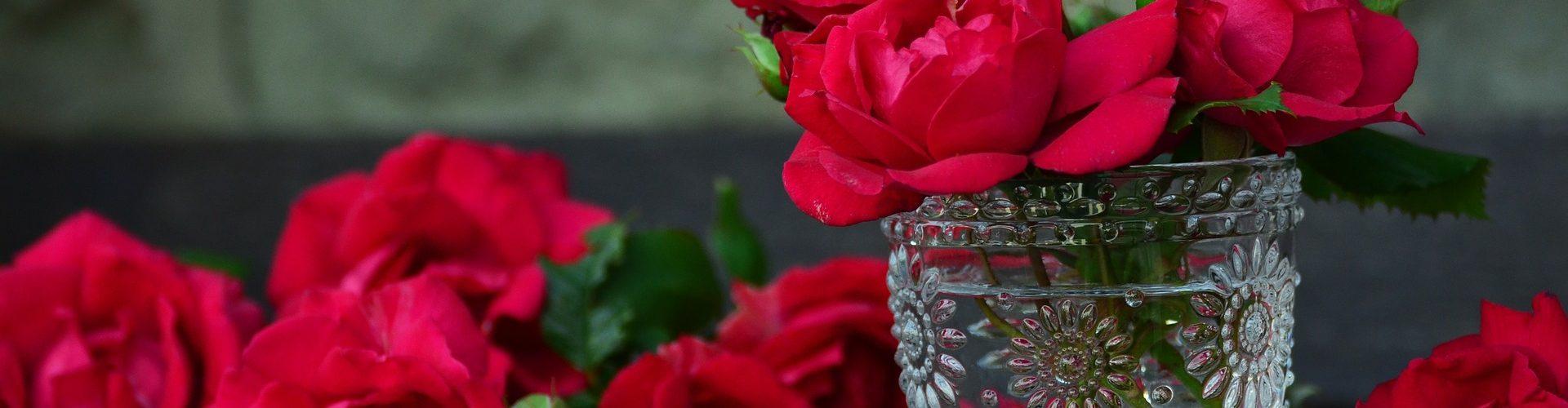 flores san sebastian de los reyes