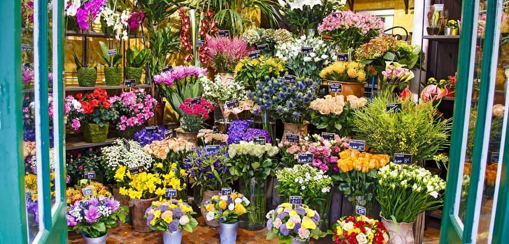floristerías en san sebastián de los reyes