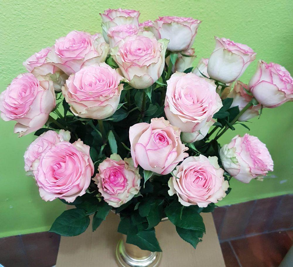 floristeriaparque3_Jarron_rosas_esperance